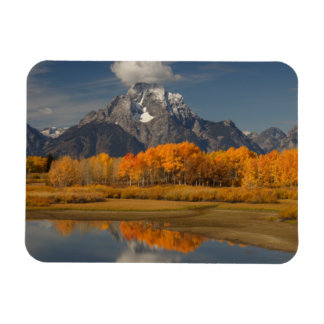 oxbow bend in fall colors magnet