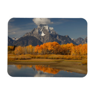oxbow bend in fall colors rectangular photo magnet
