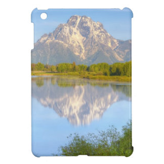Oxbow Bend iPad Mini Cases