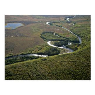 Oxbows del río de Kanuti Tarjetas Postales