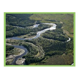 Oxbows del río de Kanuti Postal