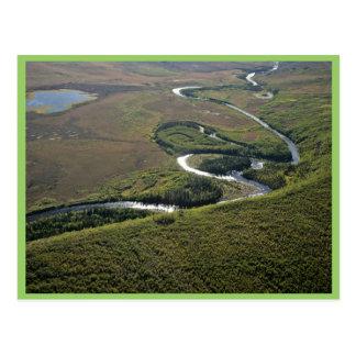 Oxbows del río de Kanuti Tarjeta Postal