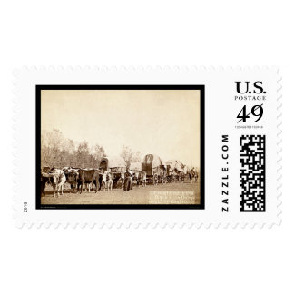 Oxen Freighting In the Black Hills SD 1887 Postage
