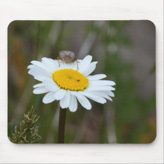 Oxeye Daisey & Tick Mouse Pad
