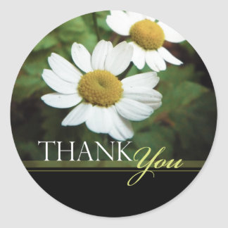 Oxeye Daisy Floral Thank You Envelope Seals Classic Round Sticker