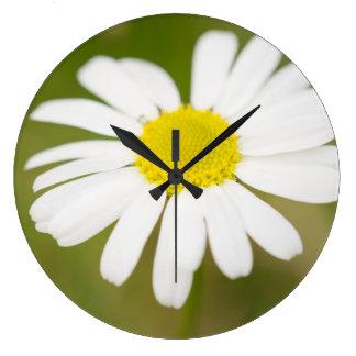 Oxeye Daisy Large Clock