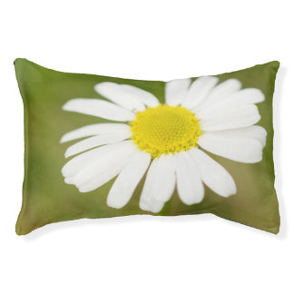 Oxeye Daisy Pet Bed