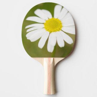 Oxeye Daisy Ping-Pong Paddle