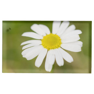 Oxeye Daisy Place Card Holder