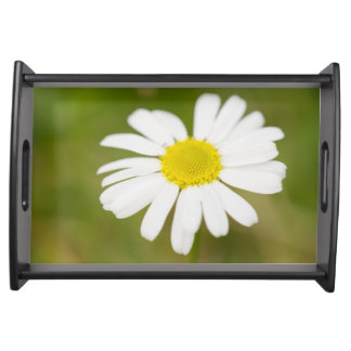 Oxeye Daisy Serving Tray