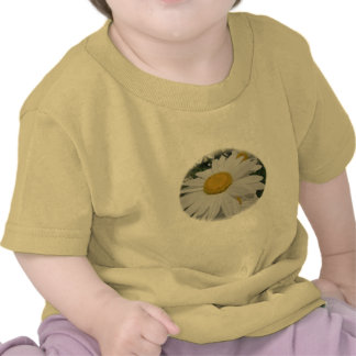 Oxeye Daisy Wildflower Floral Items Tee Shirt