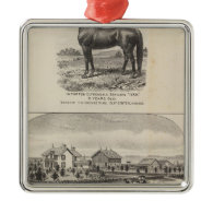 Oxford and Abilene Residences, Kansas Christmas Tree Ornament