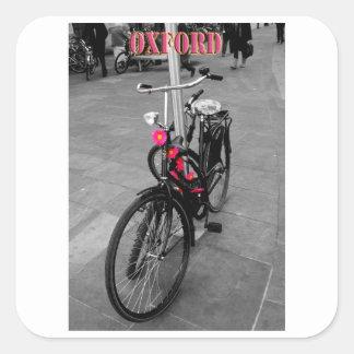 Oxford bike square sticker