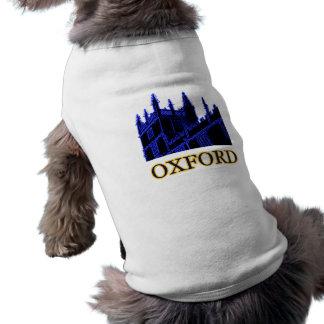 Oxford England 1986 Building Spirals Blue T-Shirt