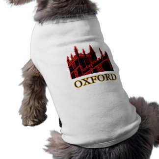 Oxford England 1986 Building Spirals Red Tee