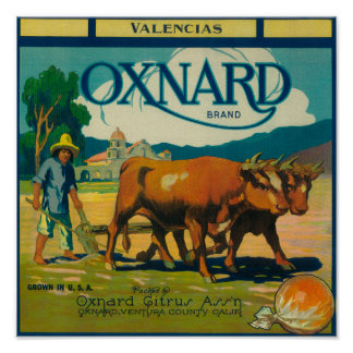 Oxnard Orange LabelOxnard, CA Poster