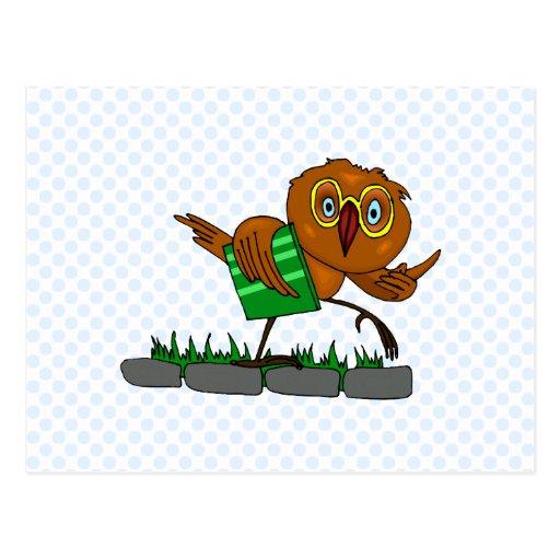 Oxnard Owl Post Cards