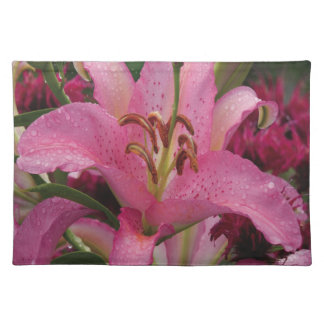Oxygentees Floratopia American MoJo Placemat Cloth Place Mat