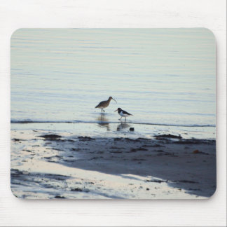 Oyster catcher and Curlew on a beach Mouse Pad