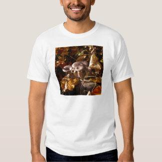 Oyster mushroom tee shirt