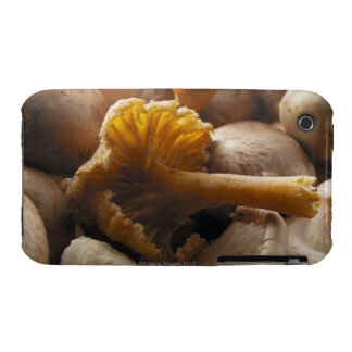 Oyster mushrooms, shiitake mushrooms, chestnut iPhone 3 Case-Mate case