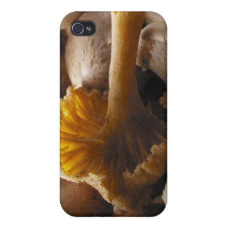 Oyster mushrooms, shiitake mushrooms, chestnut iPhone 4/4S cover