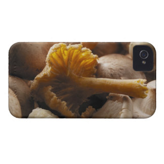 Oyster mushrooms, shiitake mushrooms, chestnut iPhone 4 Case-Mate case