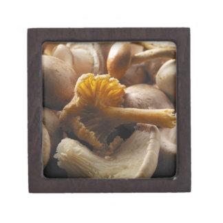 Oyster mushrooms, shiitake mushrooms, chestnut jewelry box