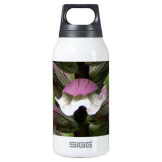 Oyster plant flower in bloom insulated water bottle