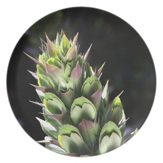 Oyster Plant Flower Melamine Plate
