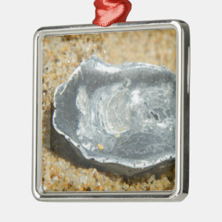 Oyster Shell in The Sand Christmas Tree Ornament