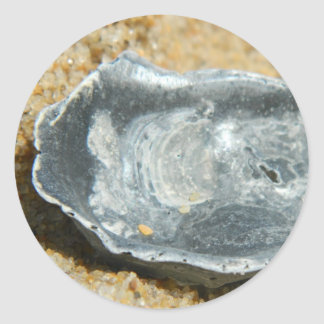 Oyster Shell in The Sand Round Sticker