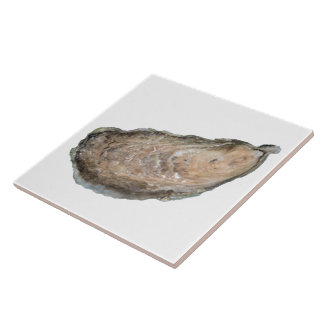Oyster Tile - Design D White