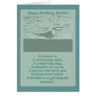 Oystercatcher Brother Birthday Card