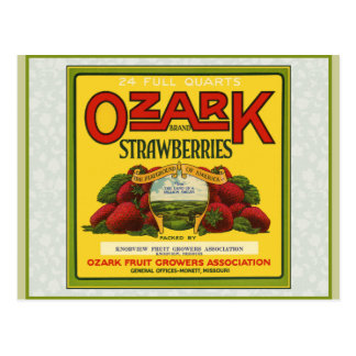 Ozark Strawberries Postcard