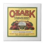 Ozark Strawberries Tiles