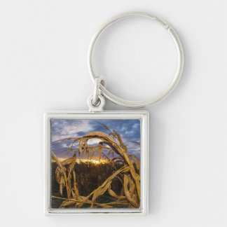 Ozarks Harvest Keychain