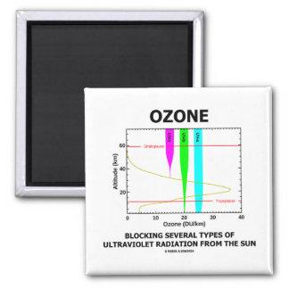 Ozone Blocking Several Types Of Ultraviolet Fridge Magnet