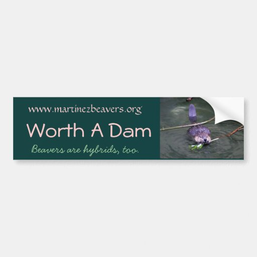 P1000945, Worth A Dam, www.martine... - Customized Bumper Sticker