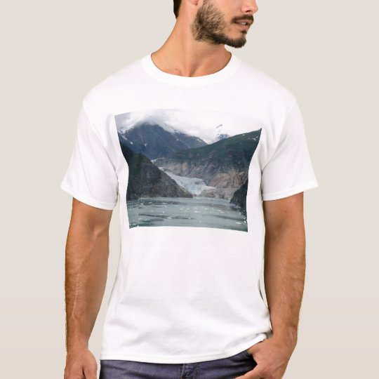 P1010088glacierbay T-Shirt