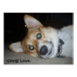 P1010351, Corgi Love Posters