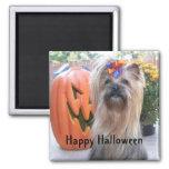 P1080884, feliz Halloween Imanes De Nevera