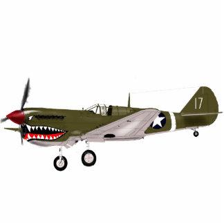 P40 Warhawk Cutout