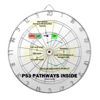 P53 Pathways Inside (Cell Molecular Biology) Dartboards
