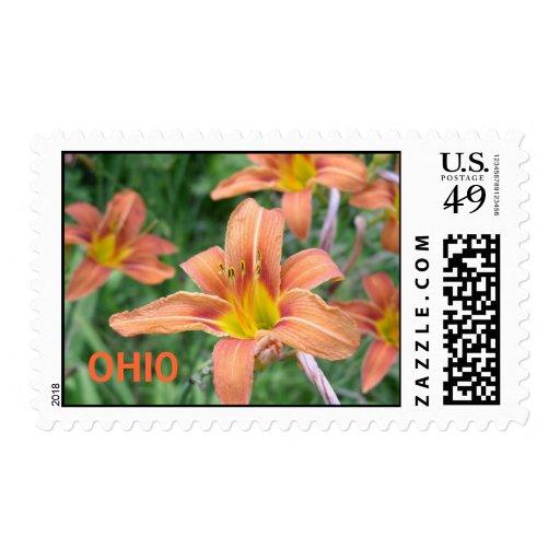P7090026, sello de OHIO