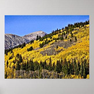 P9270030 - Colina de Aspen de oro Póster