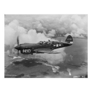 P-40 POSTER