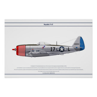 P-47D 493FS USAAF POSTERS