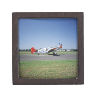 P-51 C Tuskegee Red Tail airplane at the CAF Air Gift Box