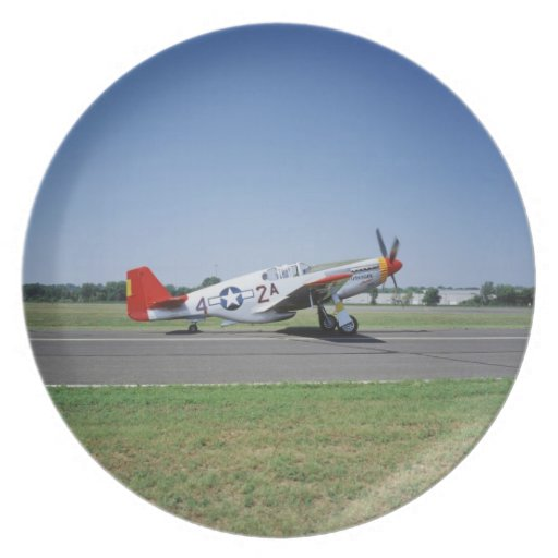 P-51 C Tuskegee Red Tail airplane at the CAF Air Plate